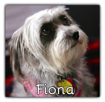 _Fiona_.jpg