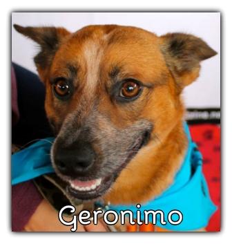 _Geronimo.jpg