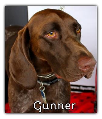 _Gunner.jpg