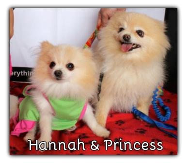 _Hannah_Princess.jpg
