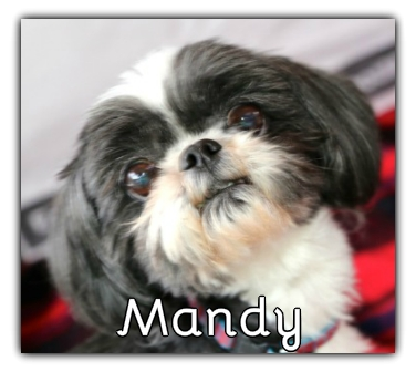 _Mandy.jpg