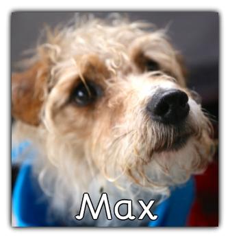 _Max_.jpg
