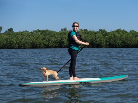 Sharon paddle boarding with Fizzy