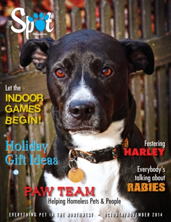 Our October / November 2014 Issue