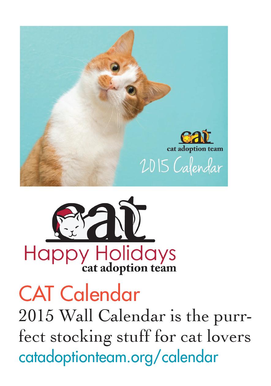 Cat-GG.jpg