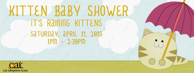 cat-kittenbabyshower.jpg