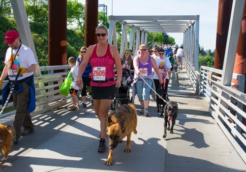 Doggie Dashers along the Eastbank Esplanade