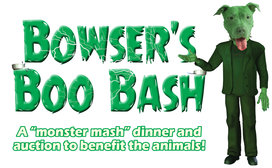 Bowsers-Boo-Bash-Slider-940x582.png