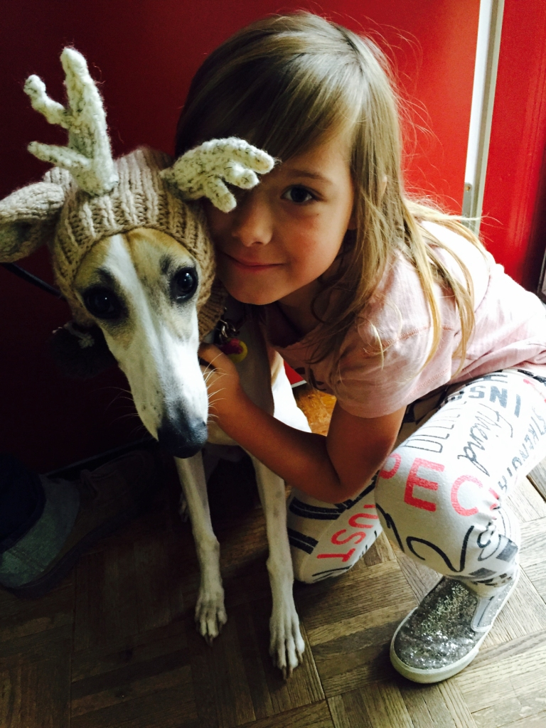 Sweety Whippet-Mix loves being a reindeer. She likes her ears to be warm.  ~ Lori Rose