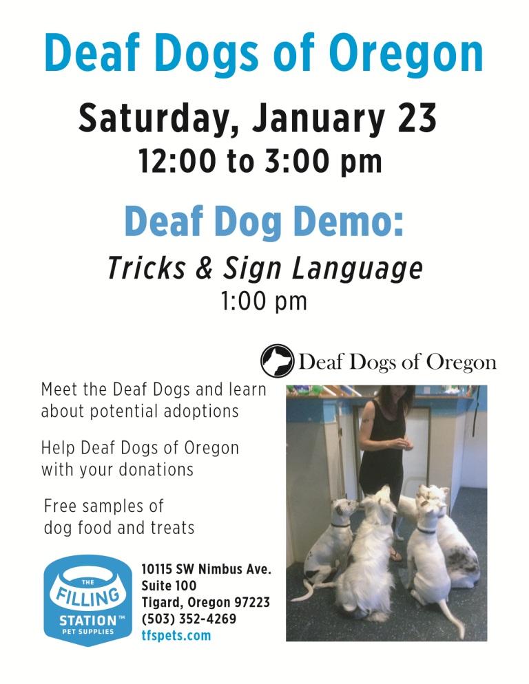 Deaf Dogs Flyer 2016 6.jpg