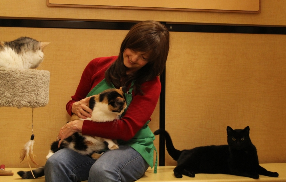 Diane Stevens giving love during her volunteer shift at Furry Friends
