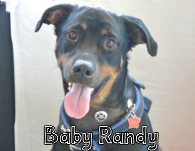 BabyRandy.jpg