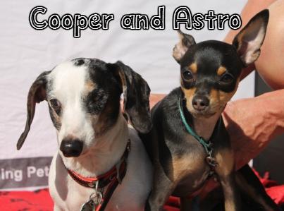 Cooper_Astro.jpg