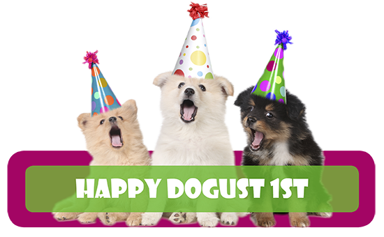 DOGust 1st Birthday Party For Shelter Pets