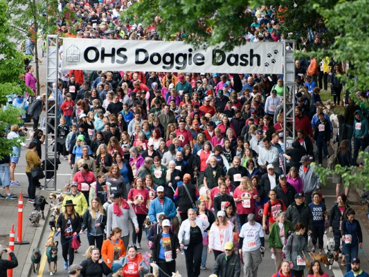 30th annual Doggie Dash is May 13th