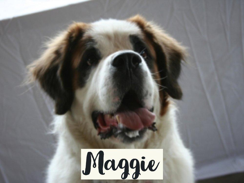 Maggie_WV17.jpg