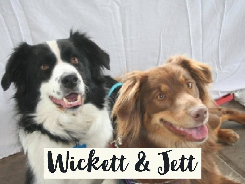 Wickett-Jett_WV17.jpg
