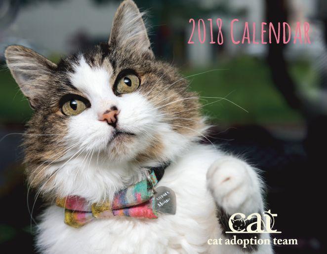 2018-CAT-Calendar-Cover_C.jpg