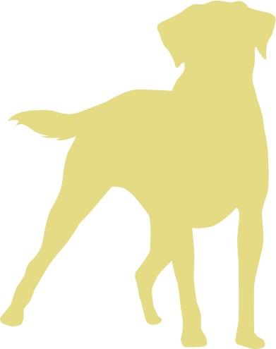 dogFINAL_grn.jpg