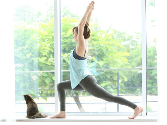 New year's fitness resolution flagging?  Try yoga with cats!