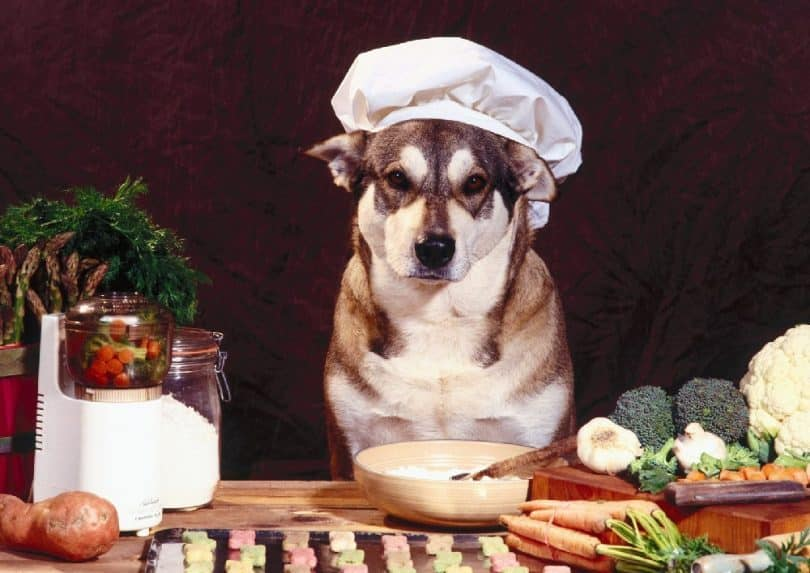 Health-food-Husky-810x573.jpg