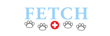 fetch logo (1).png
