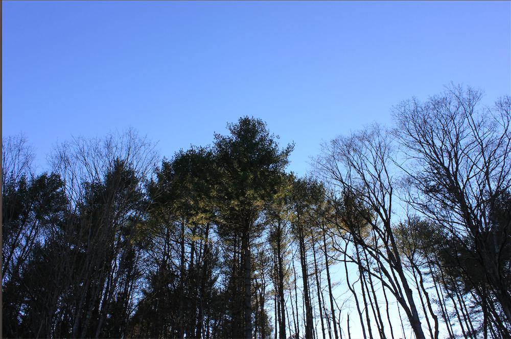 Vermont Sky - PHOTO: Tatiana K