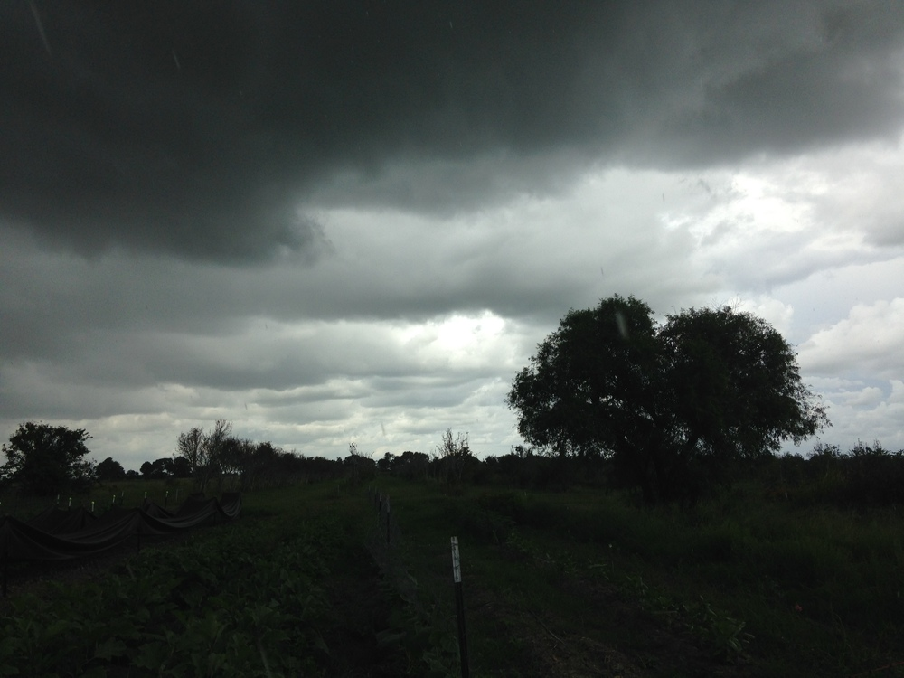 A dark and cloudy afternoon.