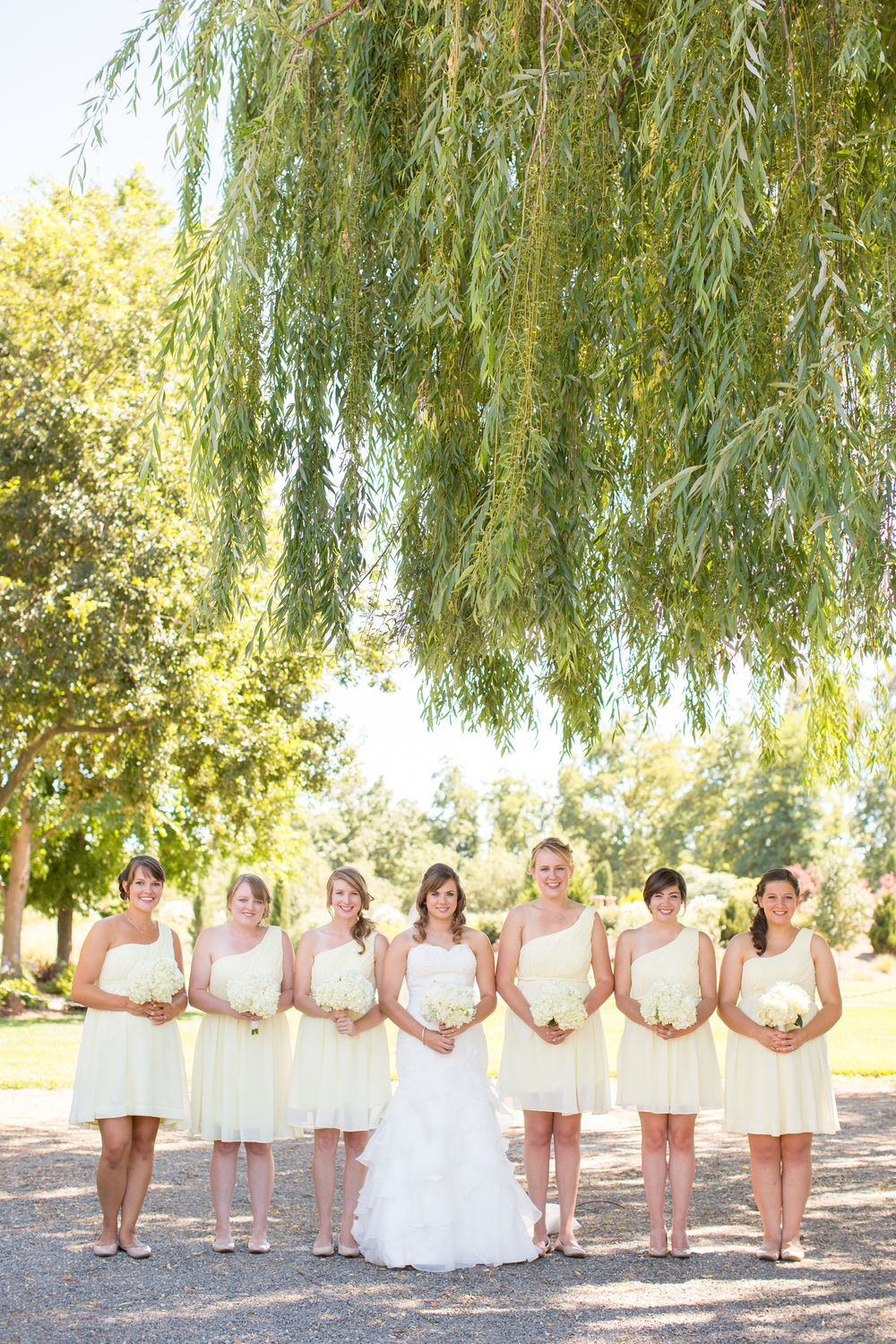 Chico California Wedding and Engagement Photography by TréCreative - Creek Haven Vineyard Estate Wedding Photography (206 of 437).jpg