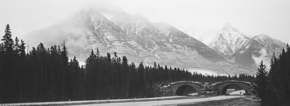 West of Banff town site, Ilford HP5