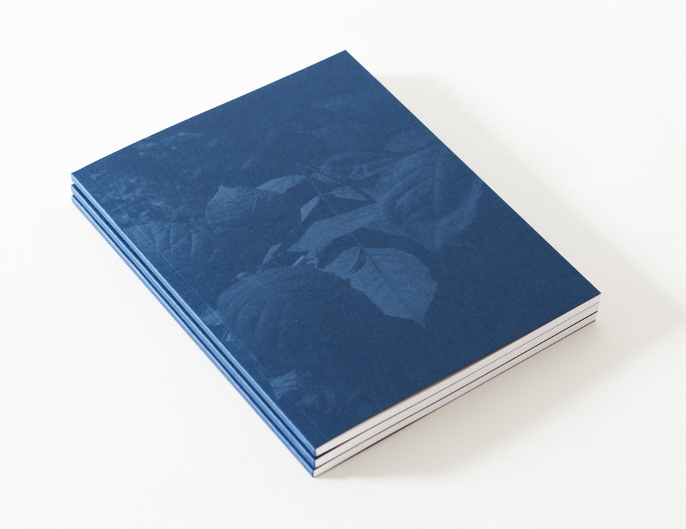 TIS_book_cover.jpg