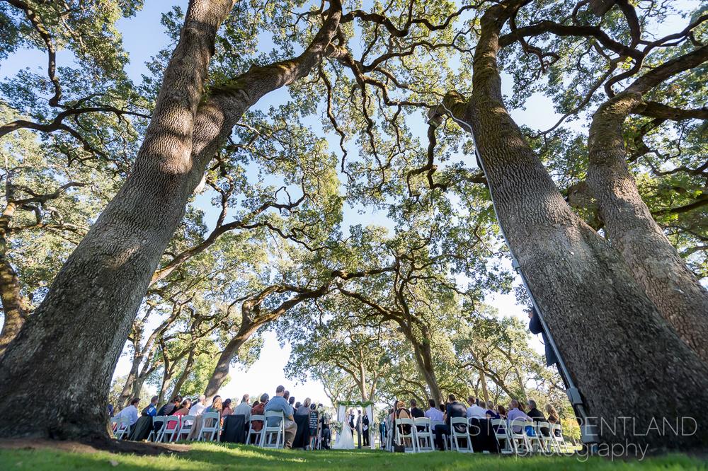 krista+danny_wedding_spp_001.jpg