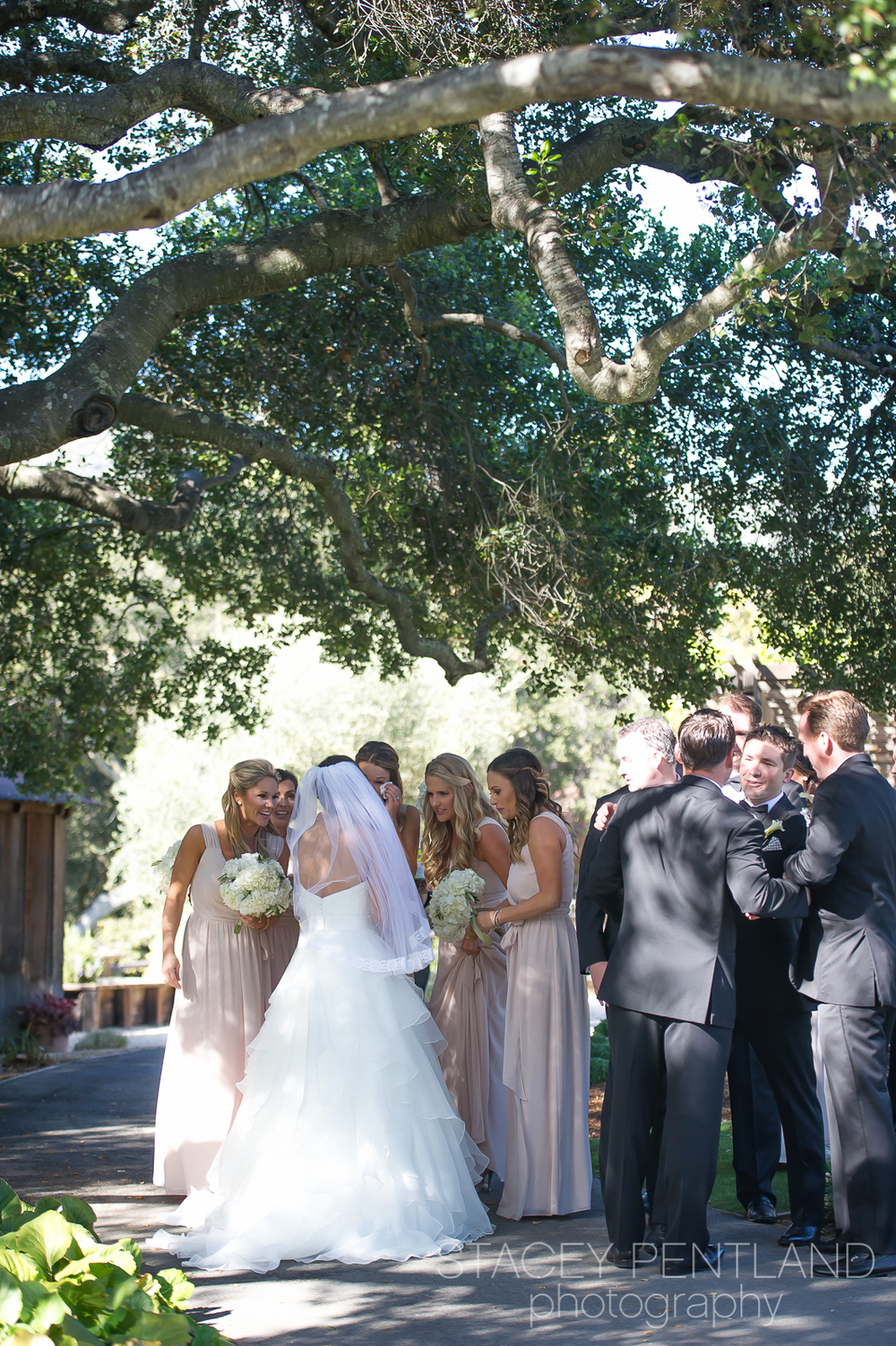 Kristin+Jason_wedding_blog_spp_081.jpg