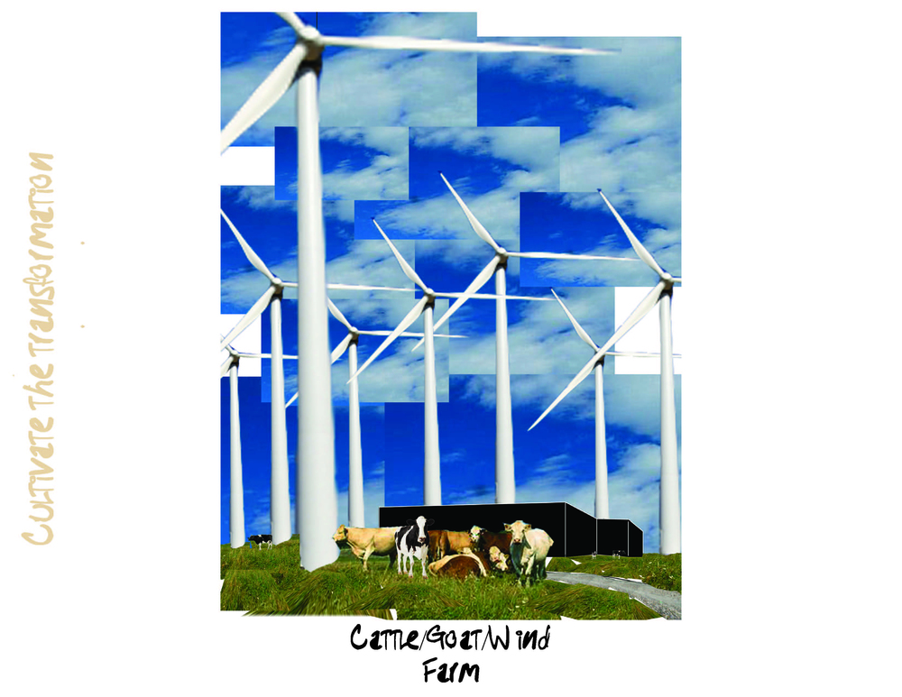 9_cattle goat wind farm.jpg