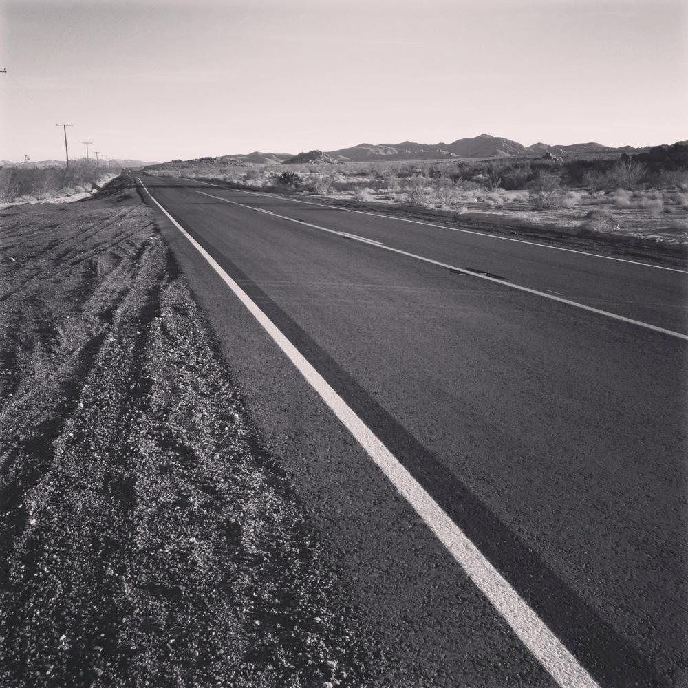 jtree road.jpg
