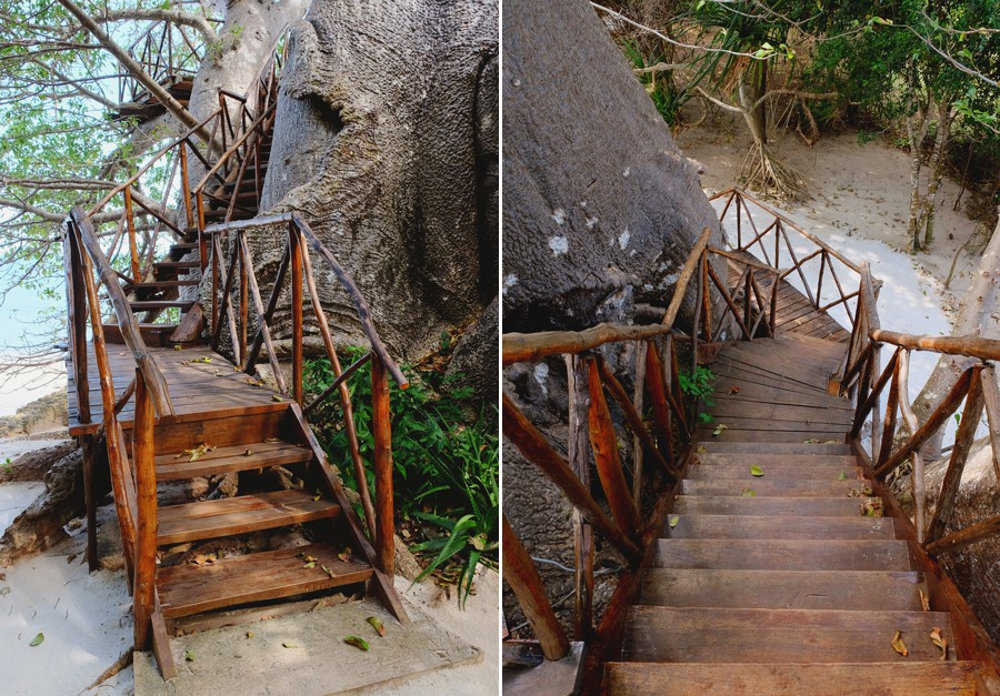 Fumba Beach Lodge tree stairs