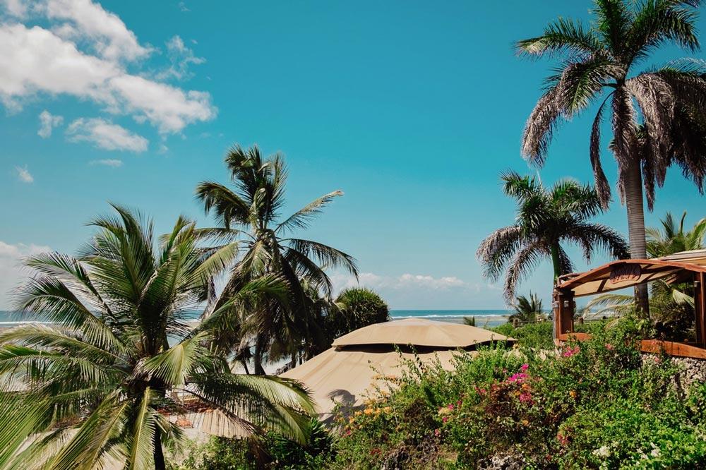 Leopard_beach_Diani_Mombasa_Honeymoon_ 1.jpg