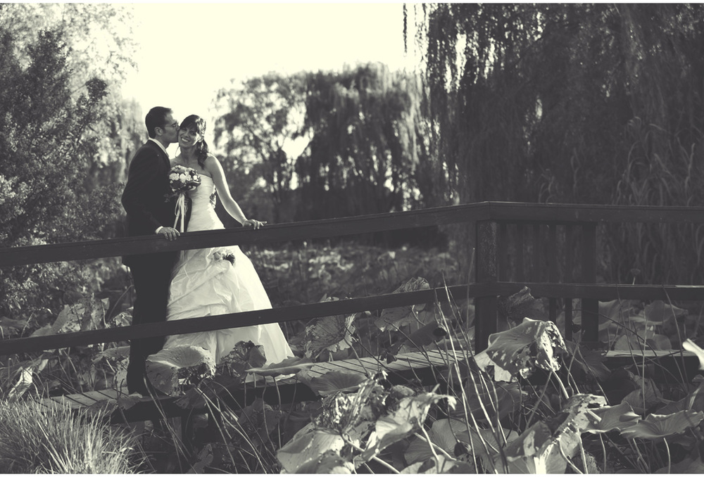 Wedding PH 7.jpg