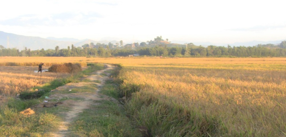 Agriculture Land in theLangthabal Area