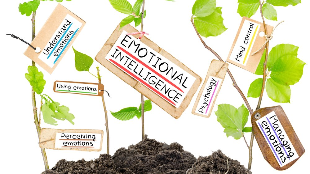 Emotional Intelligence is the ability to identify and manage your own emotions and the emotions of others.