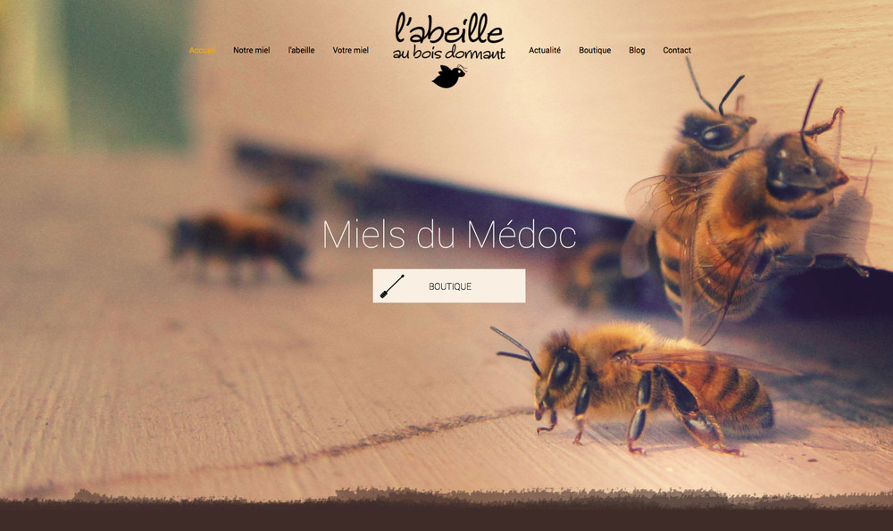 l'abeille au bois dormant : site de l'abeille au bois dormant, miels du Médoc.