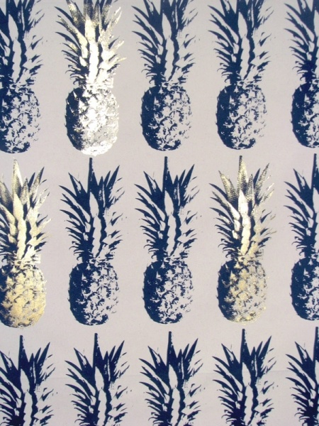 http://ww38.darkdogstudio.com/index.php?/project/pineapple-cushions/2/