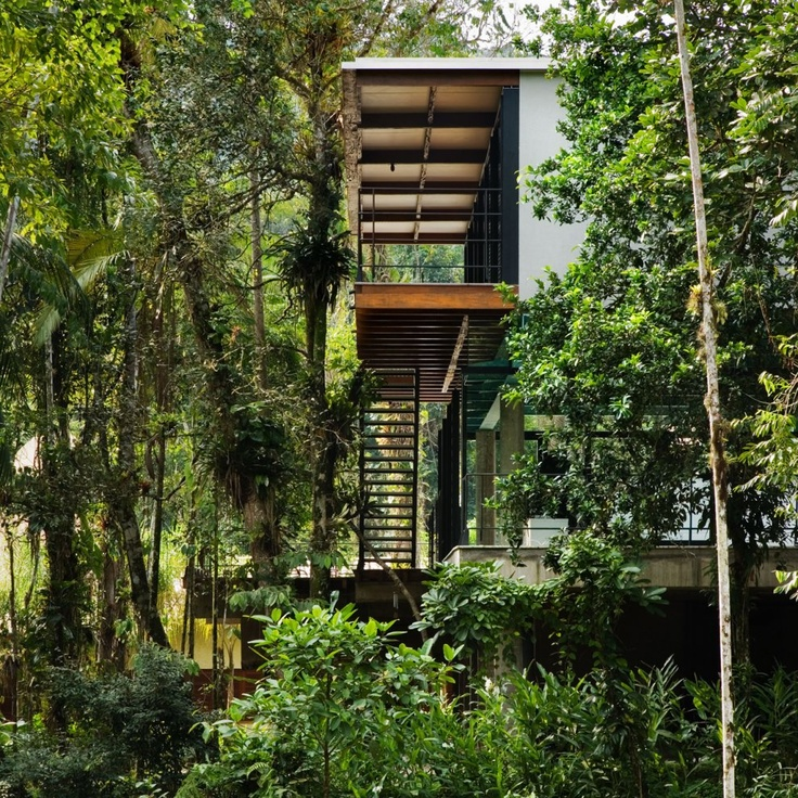 http://www.architizer.com/en_us/projects/pictures/iporanga-house/39977/343003/#.UcCFSOfjfSs