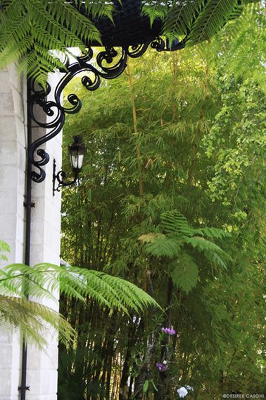 http://www.casacolonialhotel.com/