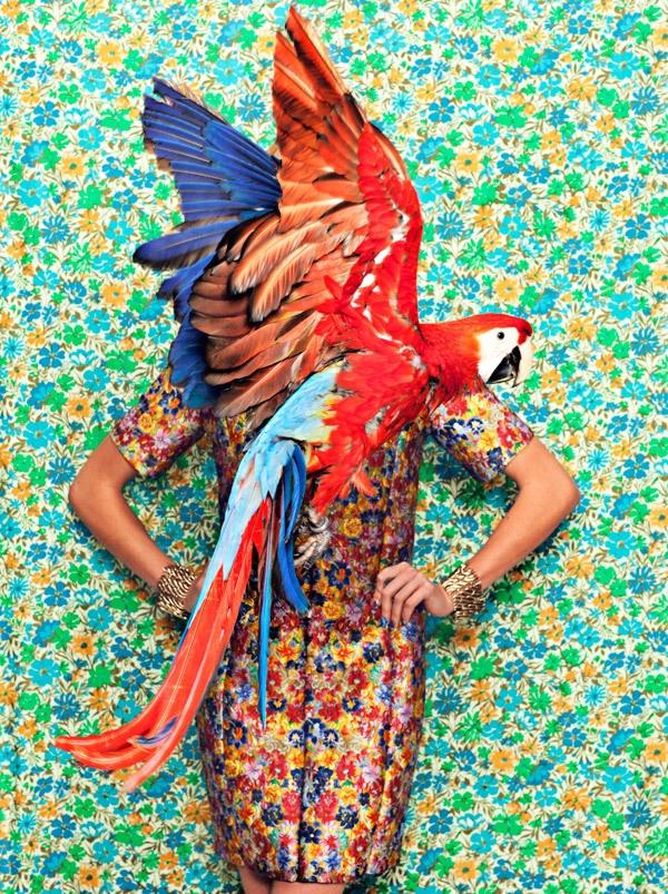 http://www.behance.net/gallery/Flight-Patterns/3223155