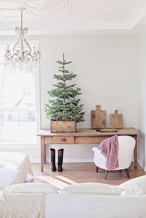 Vintage box as tree base