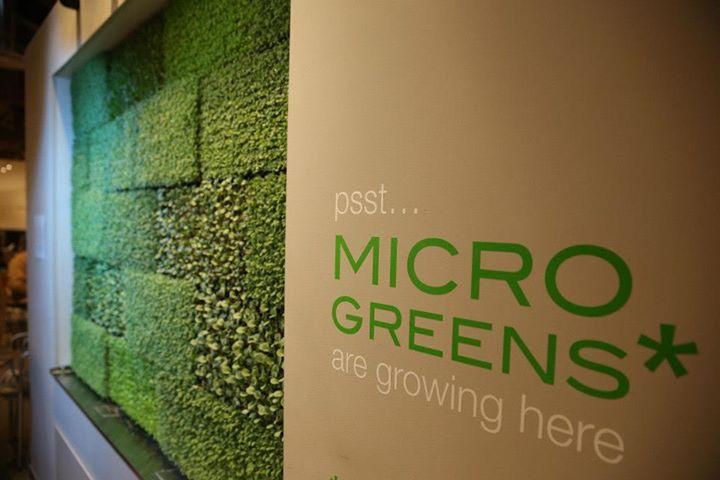 micro greens.jpg