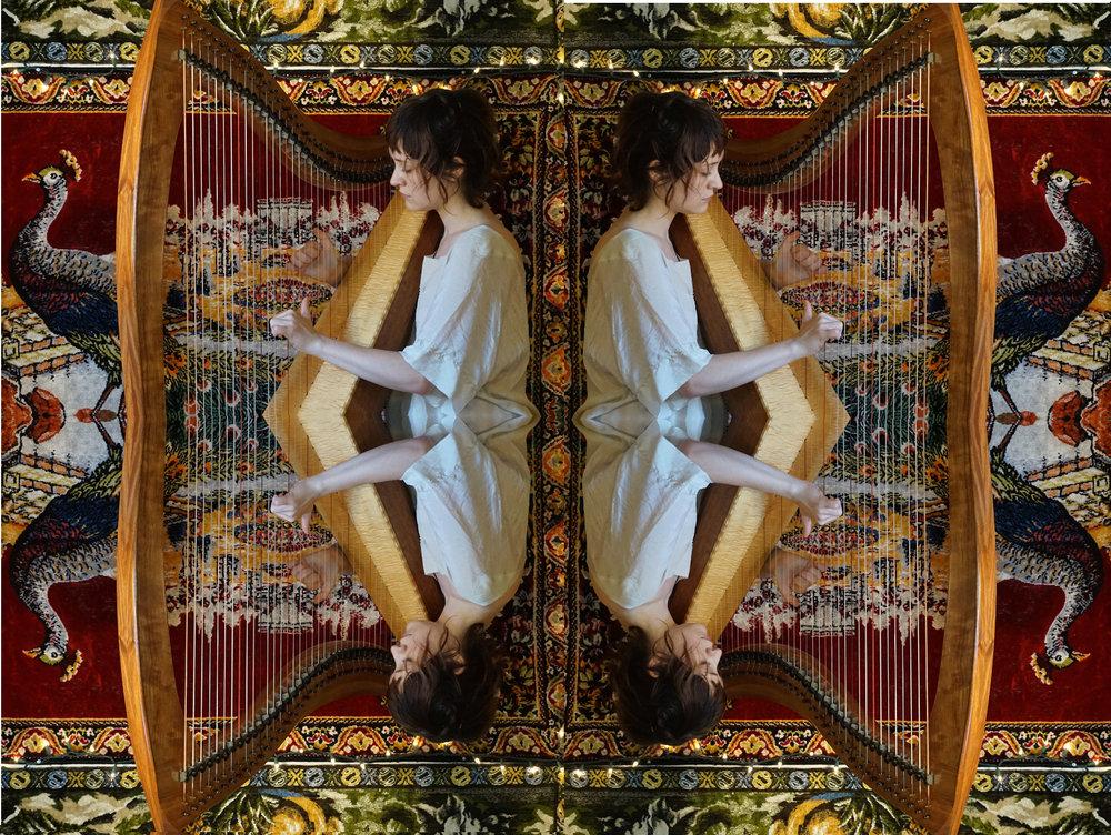 harp trip 4.jpg
