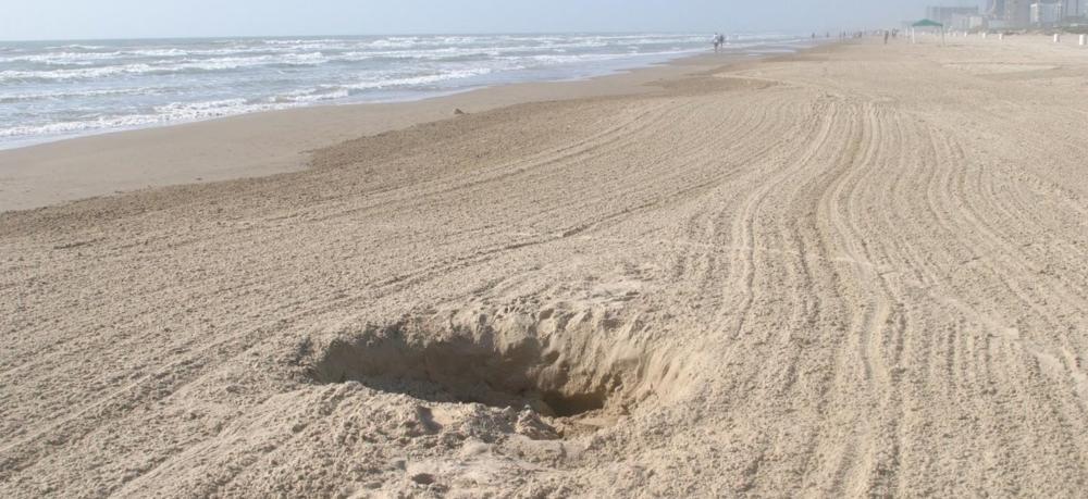 Beach-Hole-1-1-768046.jpg