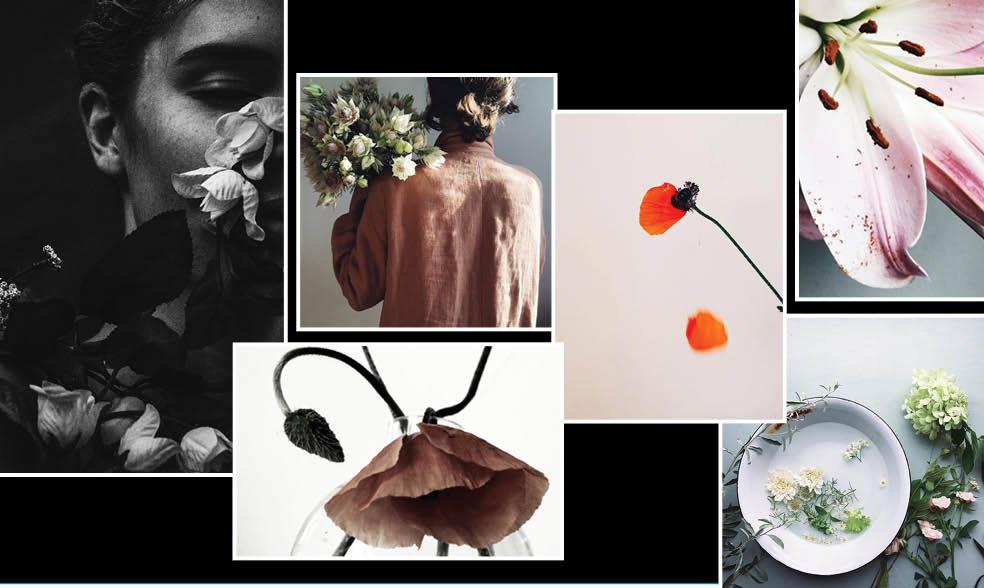 Loui Loui floral